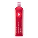 Dầu gội Innisfree Camellia Essential Shampoo