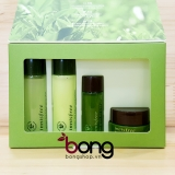 Bộ dưỡng da Mini Innisfree Green Tea Special Kit